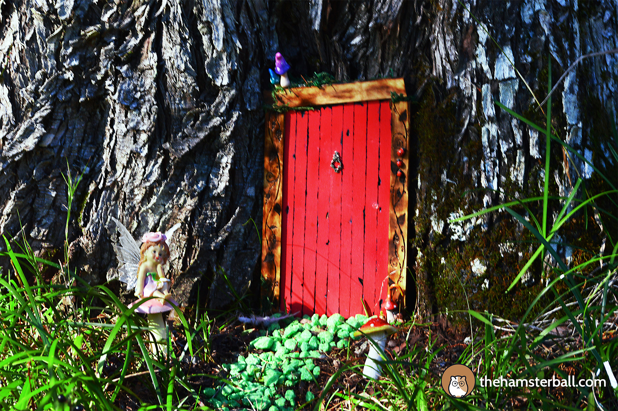 The Fudge Shop, Springbrook, Eco Sensitive, environment, red door, tree, fairy, mushroom