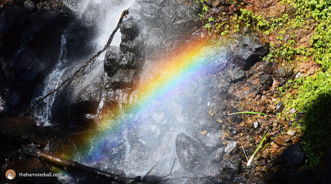 Rainbow Falls, Springbrook, Gold Coast