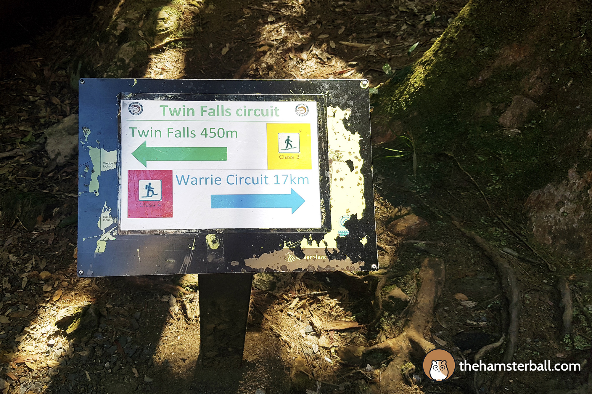 Warrie Circuit, Springbrook, Twin Falls