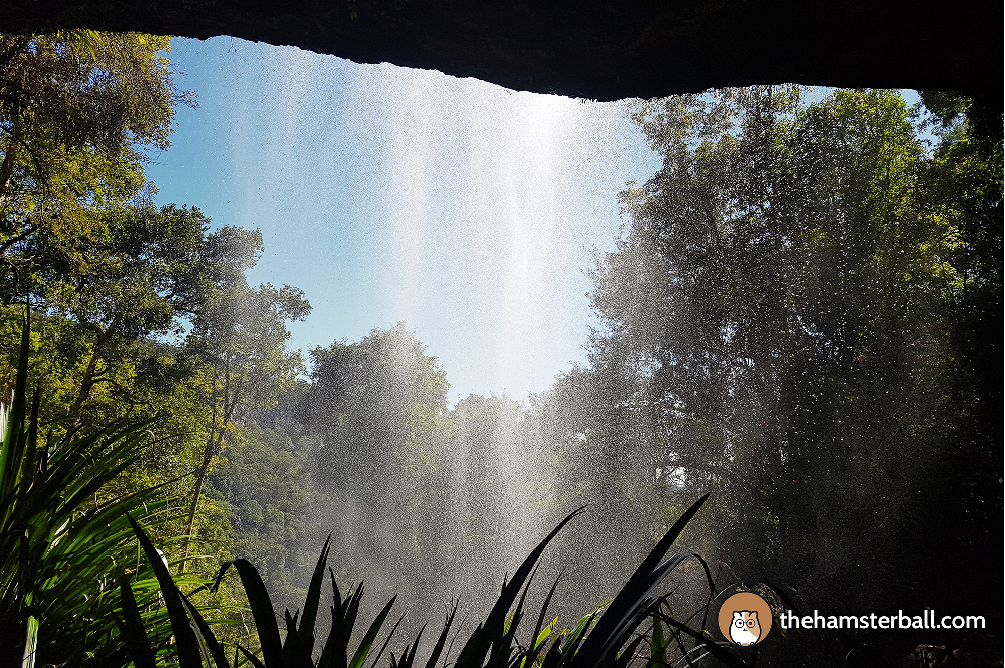 Warrie Circuit, Springbrook, Twin Falls, Perspective, Awe